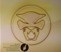 "THUNDERCAT  ""The Golden Age Of Apocalypse"""